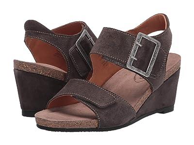 Taos Footwear High Society (Dark Grey) Women