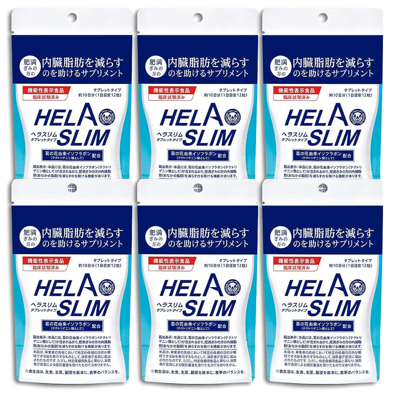 終了する衝突罪悪感【6袋セット】HELASLIM(120粒入り)アルミパック