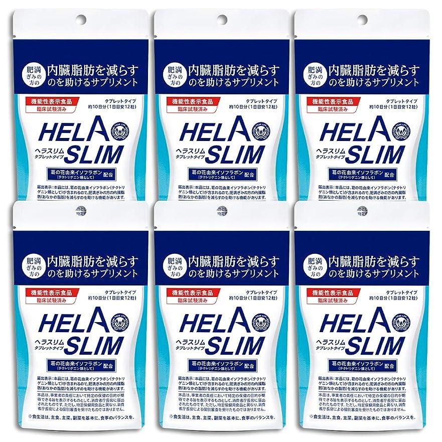 翻訳気を散らすのスコア【6袋セット】HELASLIM(120粒入り)アルミパック
