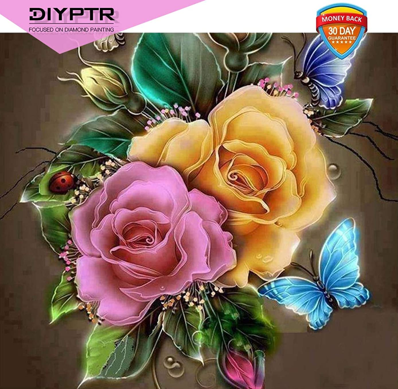DIY 5D Diamond Painting by Number Kits for Adult, Full Drill Diamond Flower Butterfly Embroidery Dotz Kit Arts Craft Home Living Room Wall Decor, 11.8 x 15.8 inch