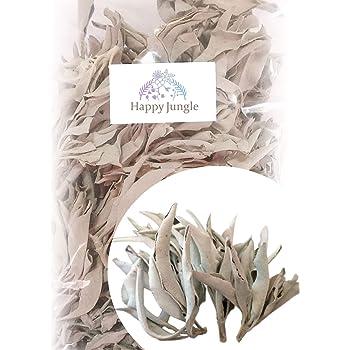 【品質が大切な理由とは】最高品質 ホワイトセージ 浄化用 (茎+リーフ) 50g 手で厳選 無農薬 カルフォルニア 直輸入 オーガニック