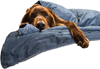 Best thunder shield for dogs Reviews