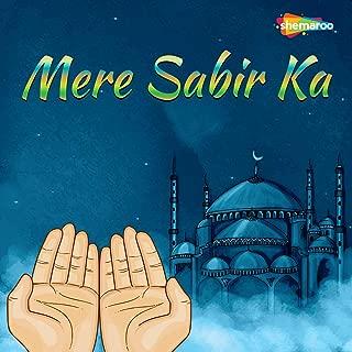 Chote Bade Sarkar