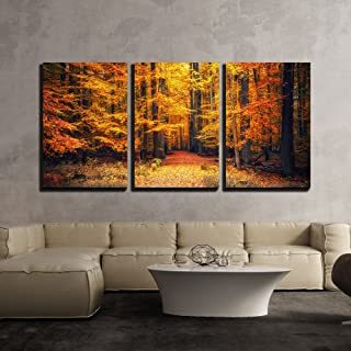 wall26 - 3 Piece Canvas Wall Art - Pathway in The Autumn Park - Modern Home Decor Stretched and Framed Ready to Hang - 24