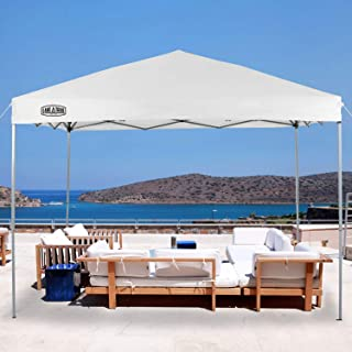 Best quick shade qs summit x sx170 canopy Reviews