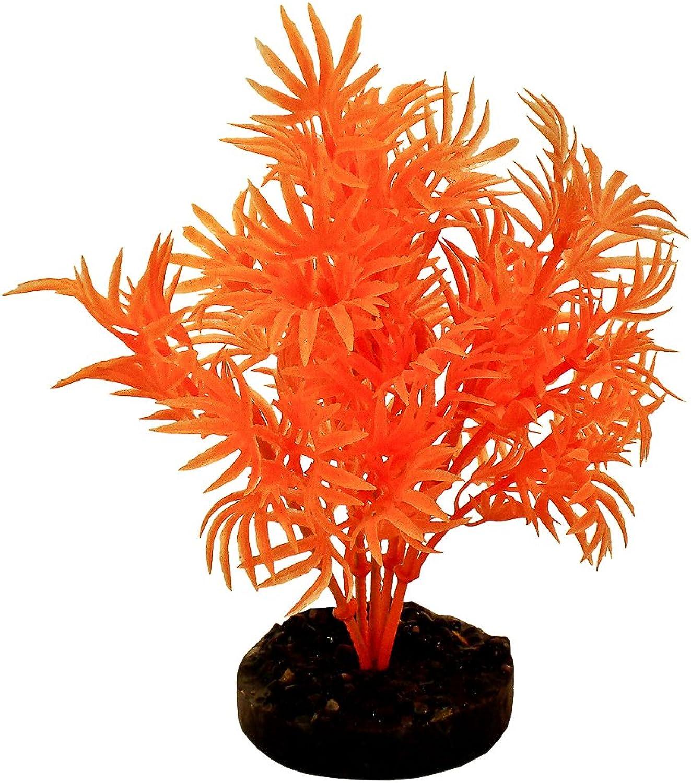 bluee Ribbon Pet Products 30541 Neon orange color Burst Plant Dragon Leaf