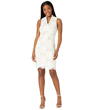 Vince Camuto Lace High Neck Bodycon with Scallop Hem