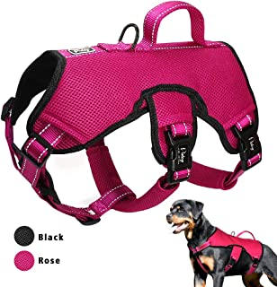 Didog Multi-Use Escape Proof Dog Harnesses for Escape Artist Dogs,Reflective Adjustable Padded Sports Vest Harlter for Medium Large Dogs Hiking Walking Trails