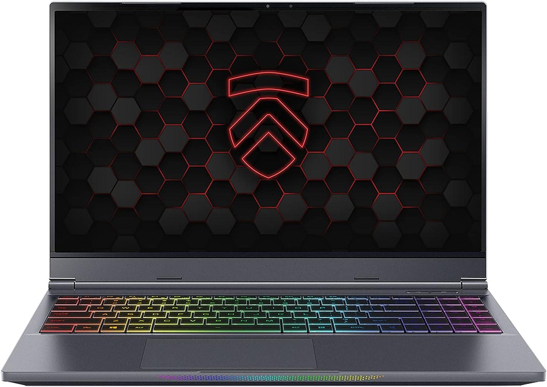 "Amazon.com: Eluktronics MAX-15 Covert Gamer QHD 165Hz Gaming Laptop PC: AMD  Ryzen 7 4800H 8-Core CPU NVIDIA GeForce RTX 3060 Graphics Card 15.6"" 100%  sRGB Display Windows 10 Home 1TB NVMe SSD"