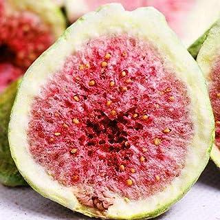 Glorious Inheriting Aziatische oorsprong bevroren gedroogde fig van knapperig stuk met nettozak van 1KGS / 1,000 gram