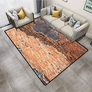 Outdoor Rugs Rustic Cracked Concrete Vintage Brick Wall Grunge Style Ruined Pattern Image Black Tile Red Carpet Padding 5'x7'