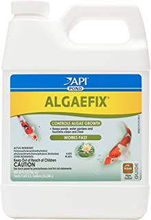 Mars Fishcare North America API Pond Algaefix 32 fl. OZ (946mL)