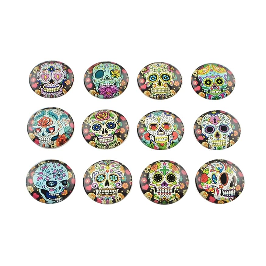 NBEADS 10 Pcs Half Round/Dome Candy Skull Pattern Glass Flatback Cabochons for DIY Projects, Mixed Color, 14x4mm