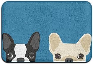 Boston Terrier And French Bulldog Friends Doormat Anti-slip House Garden Gate Carpet Door Mat Floor Pads