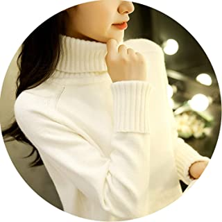 Long Sleeve Knitted Turtleneck Sweaters Casual Warm Sweaters for Winter Jumper