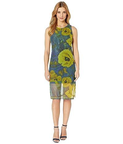 Nally & Millie Floral Print Mesh Dress (Multi) Women