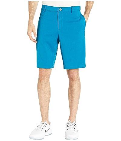 Nike Golf Flex Core Shorts (Green Abyss/Green Abyss) Men