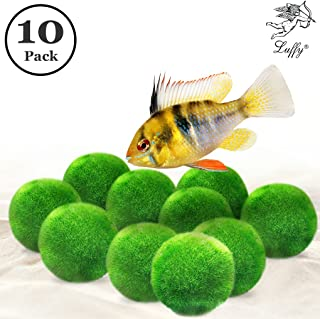 Luffy Nano Marine Moss Balls for Neon Tetra, 0.4 Inch, Beautiful Decor, Play Toy for Freshwater Fish, Easy Maintenance, Give Your Fish Company, 6 Pack