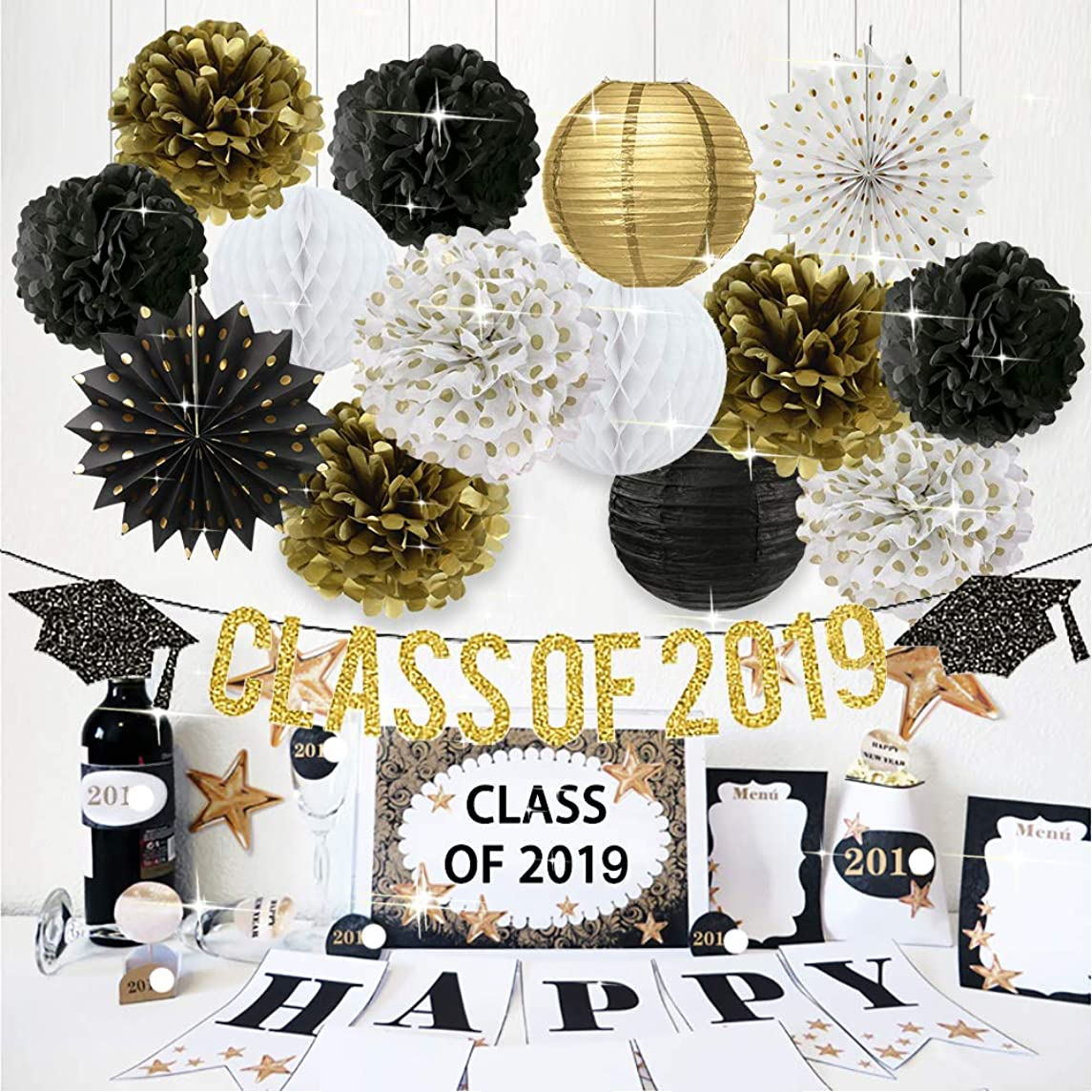 2019 Graduation Party Decorations Class of 2019 Graduation Banner Tissue Paper Flowers Pom Poms Paper Lanterns Hanging Paper Fans for College Grad Party and High School Graduation Party Supplies 2019