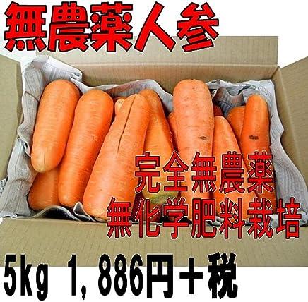 無農薬人参 ジュース用(無選別)5kg