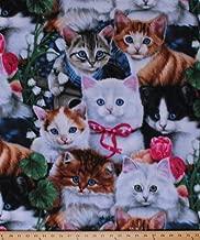 Fleece Valentine's Kittens Cats Kitty Kitties Roses Flowers Animals Valentine's Day Fleece Fabric Print by The Yard (AL-2003-MA-1MULTI)