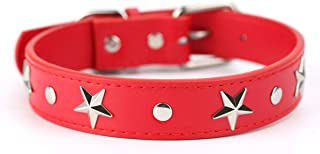 Best silver collar for dogs Reviews