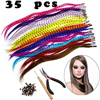 Feather Hair Extension Kit with Synthetic Feathers 100 Beads Plier and Hoo (35 Feather)
