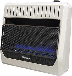 Best procom 30000 btu blue flame heater Reviews