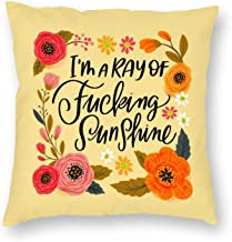 Decorative Pillow Covers I'm A Ray of Fucking Sunshine Throw Pillow Case Cushion Cover Home Office Decor,Square 16 X 16 In...