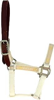 Equitem Break Away Adjustable Foal Halter with Gold Pony Running Tape (White)