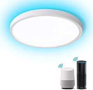 Lonon Smart Ceiling Light,24W Dimmable LED Surface Mount Light,3000K-6000K Adjustable RGB Color Tunable, Wifi App Control No Hub Required,Smart Home Lights Fixture Work With Alexa Echo,Google(12 inch)