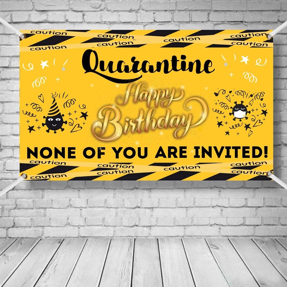 Party Backdrop Birthday Decoration Backdrops for Parties Vahser Quarantine Birthday