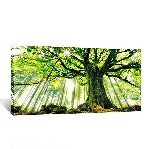 Artwork for office walls Office Space Kreative Arts Canvas Large Art Print Spring Forest Nature Green Big Tree Wall Art Photo Printed Canvas Champ Office Art Amazoncom
