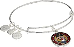 Alex and Ani - Wonder Woman Bangle