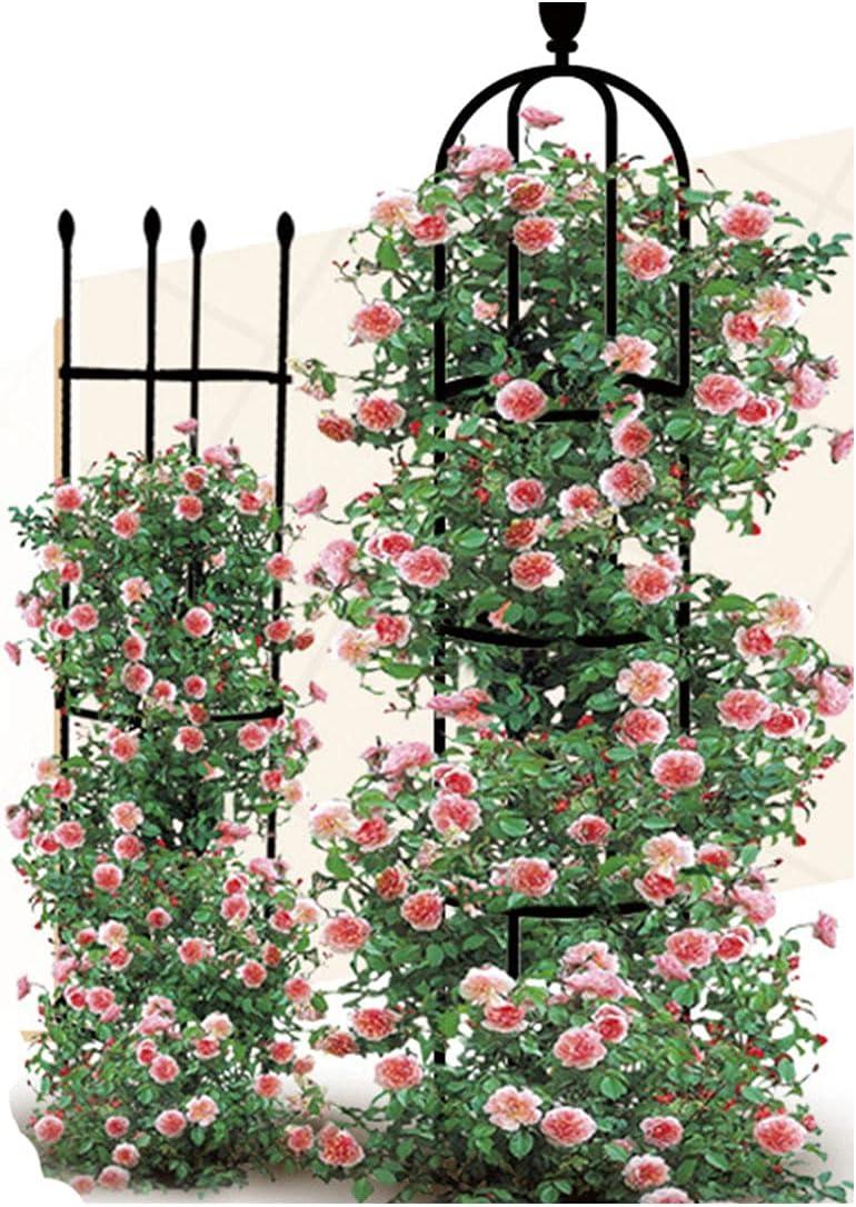 VIMOA Plant Trellis Rose Trellis Garden Trellis 2 Pack for Clinging Roses Cherry Tomatoes Trumpet Vine Clematis Plant