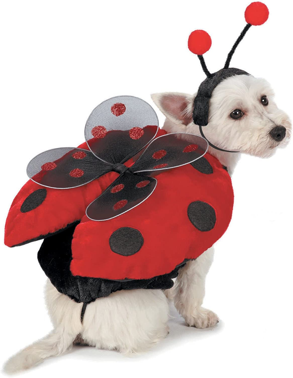 Casual Canine Ladybug Costumes for Dogs, Small