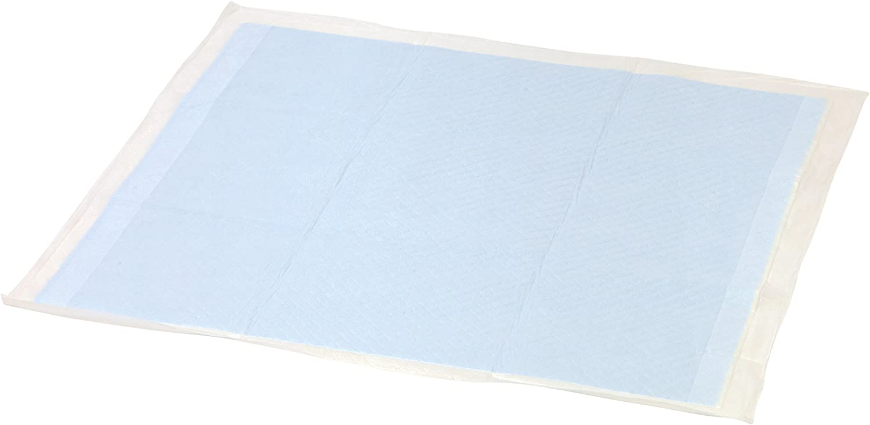 Manufacturer OFFicial shop IRIS Neat'n Overseas parallel import regular item Dry Basic Training Pad Pet