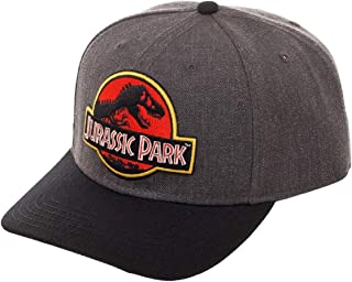 Jurassic Park Hat Classic Logo Curved Snapback Cap Grey