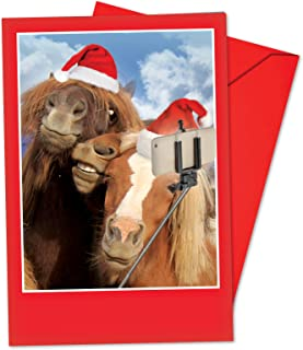 Best pony christmas cards Reviews
