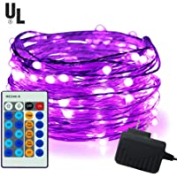 iiEASEST 33 feet 100 LED Copper Wire Dimmable Fairy Lights with Remote Control