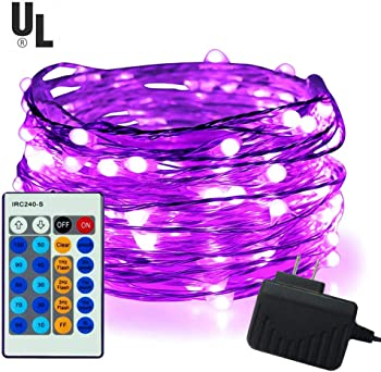 iiEASEST 33 feet 100 LED Copper Wire Dimmable Fairy Lights
