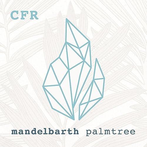 Palmtree (Tryst Remix) by Mandelbarth on Amazon Music