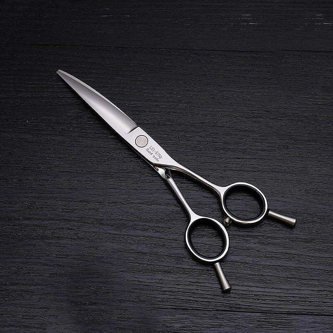 ライム期間焦がす6インチ美容院プロのヘアカット兼用バリカン、ヘアカットステンレス鋼トリマー ヘアケア (色 : Silver)