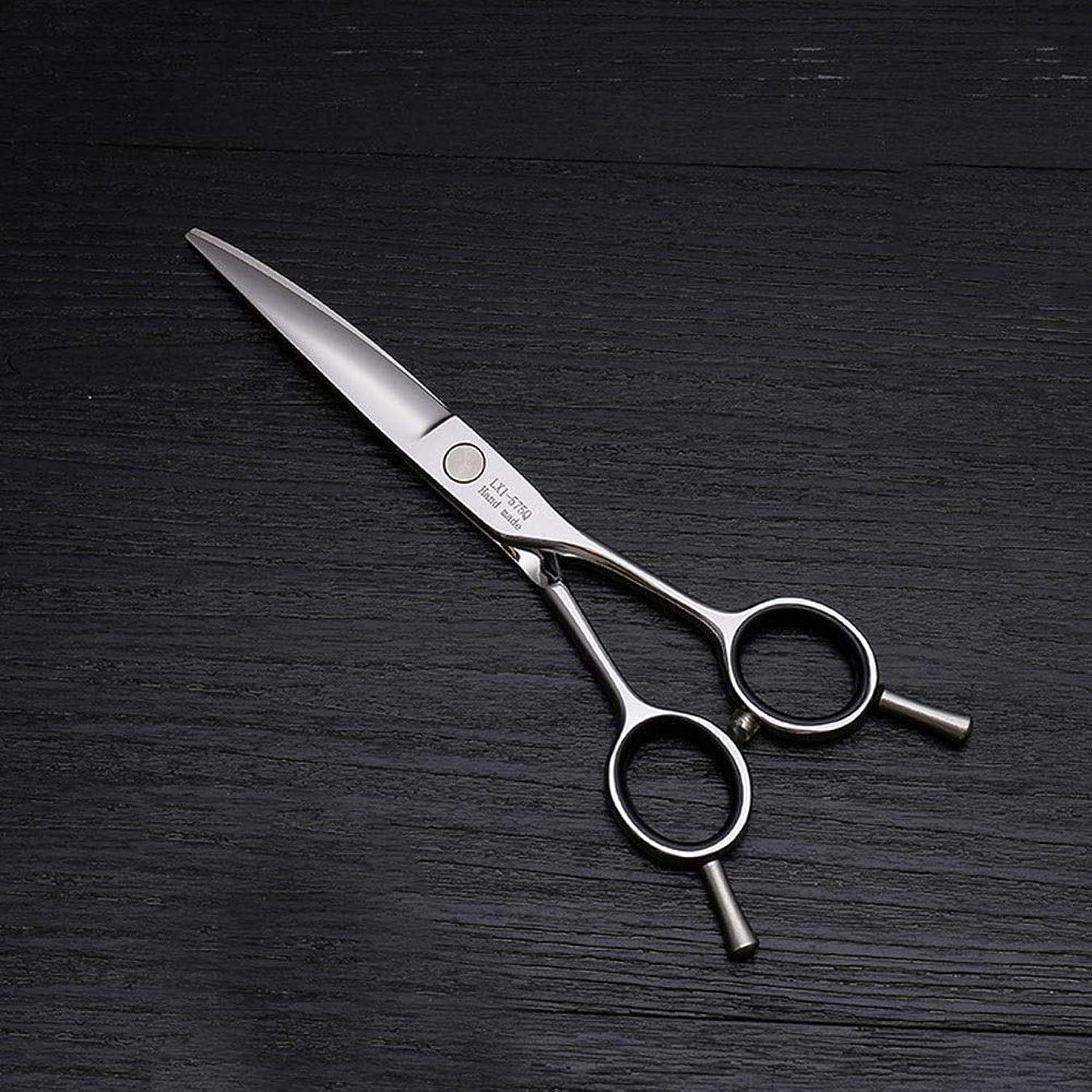 ヒットラッカス昨日6インチ美容院プロのヘアカット兼用バリカン、ヘアカットステンレス鋼トリマー モデリングツール (色 : Silver)