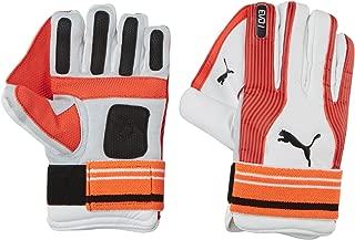 Puma, Cricket, Evo Indoor Wicket Keeper Gloves, , White
