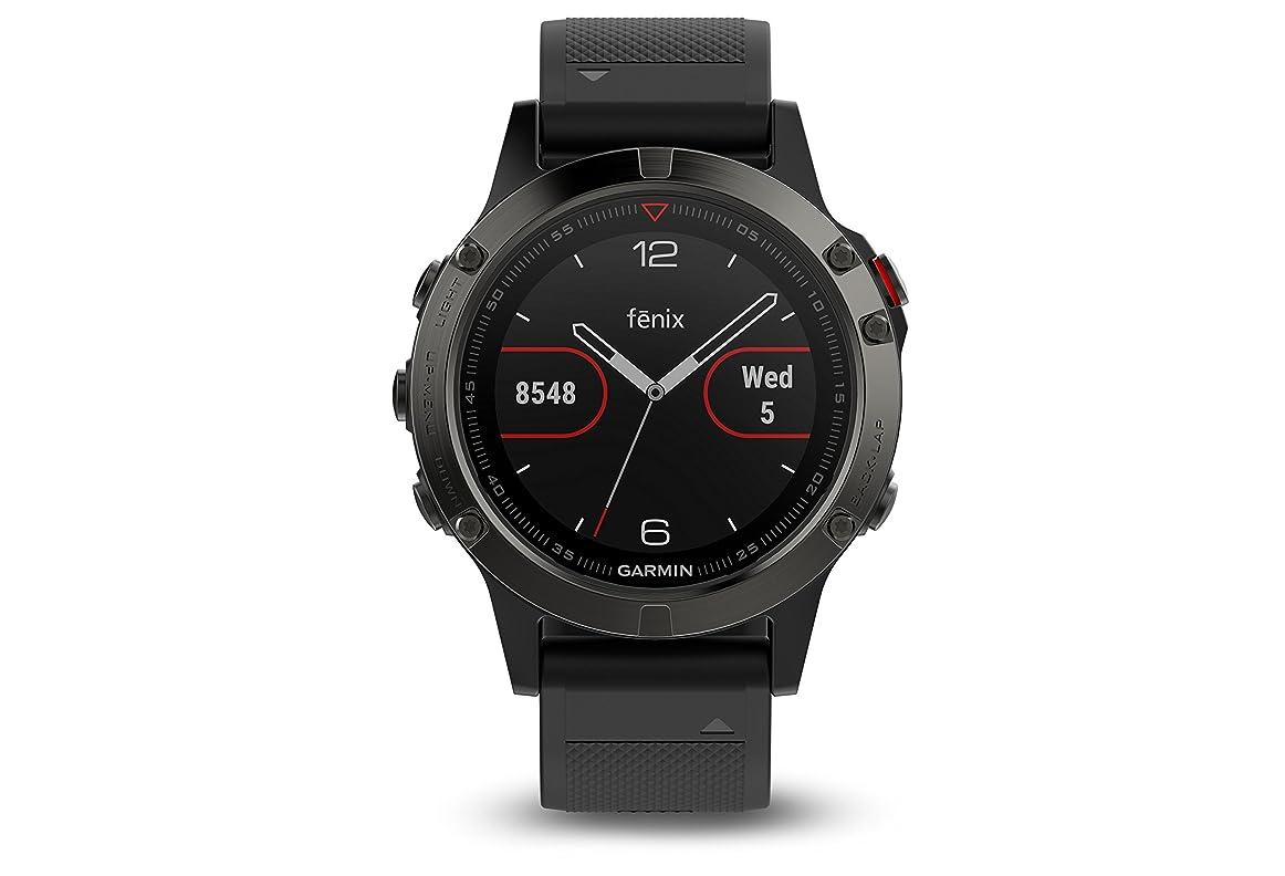 一般化する戦略製造業Garmin Fenix 5 Sapphire Watch Black With Black Band, One Size [並行輸入品]
