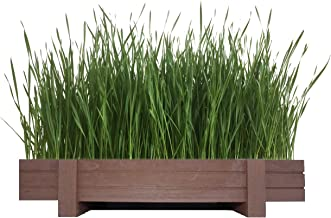 Certified Organic Wheatgrass Kit with Beautiful Wooden Countertop Planter, Wonder Soil, Organic Wheatgrass Seeds, Spray Bottle & Easy to Follow Instructions.