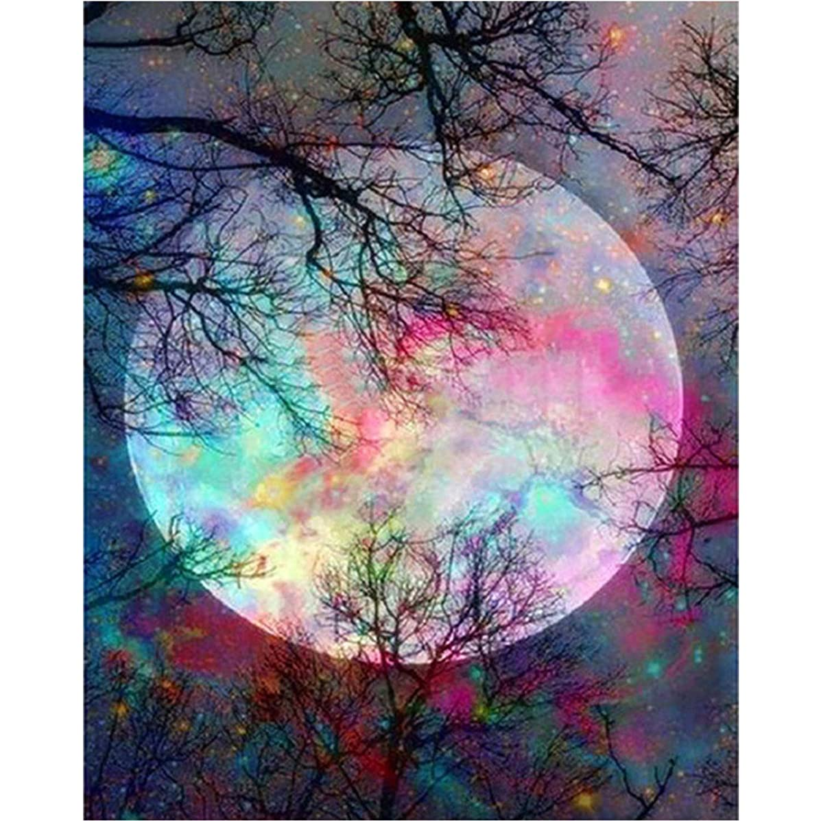 5D Full Drill Diamond Painting Kit,Hartop DIY Diamond Rhinestone Painting Kits for Adults and Beginner,Embroidery Arts Craft Home Office Decor 12 X16 Inch (Moon)
