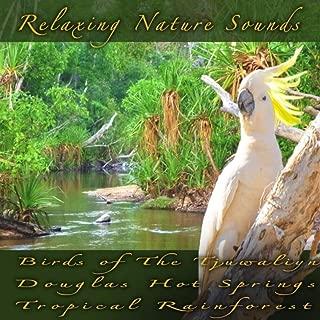 Birds of the Tjuwaliyn Douglas Hot Springs Tropical Rainforest
