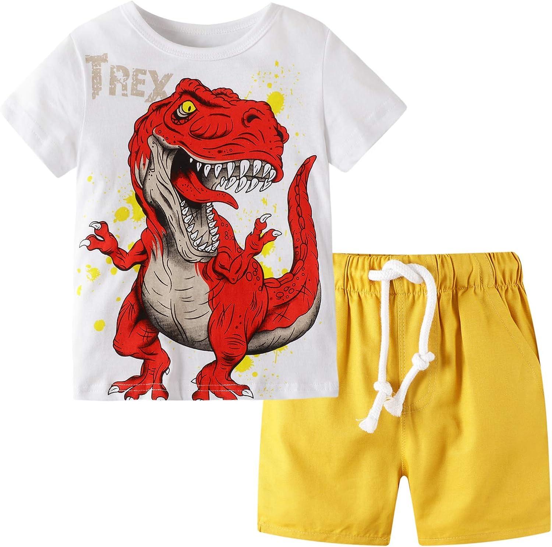 BIBNice Toddler Boy Clothes Kids Summer Outfits Shirt Short Sets 2-7T